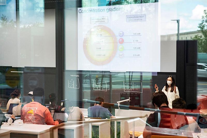 """在奥尔斯顿的科学与工程综合(SEC)第一周的课程, 琳西梅奥, 生物医学工程讲师, 教授""""作为生物工程基础的定量生理学""""."""""""