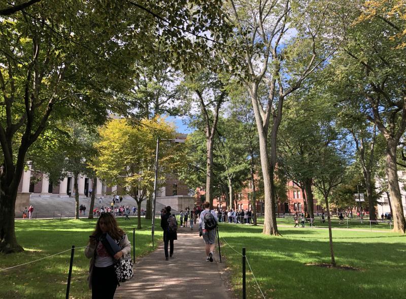 在阳光明媚的日子里,在绿树成荫的草地上走着去上课