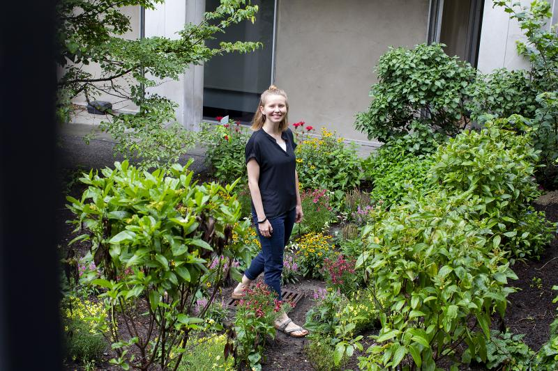 Christiana Akins from the Office for Sustainability worked with students to create rain gardens at Mather and Leverett Houses. The gardens help to alleviate some of the water puddling after rainstorms