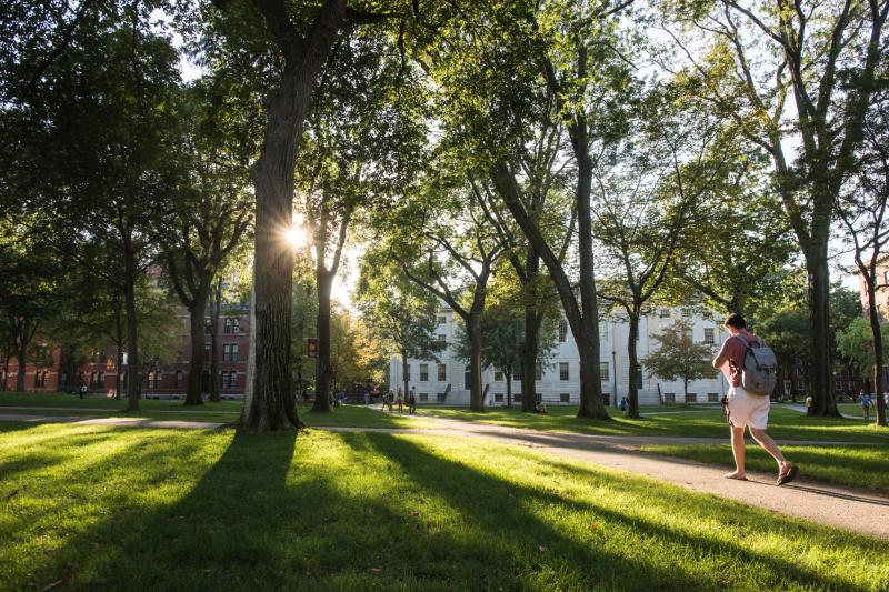 A student walks through Harvard Yard at dusk