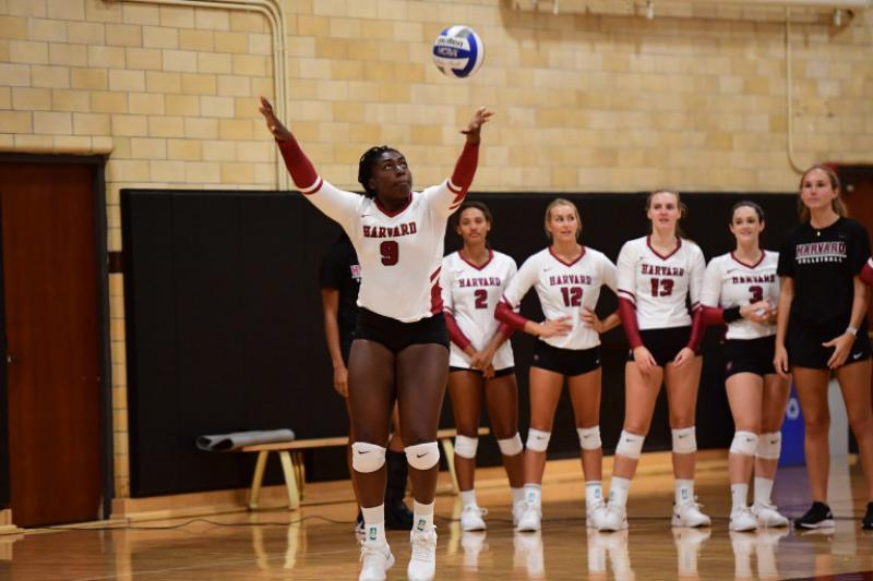 Sope Adeleye (front) decided to study neuroscience before coming to Harvard, but she didn't choose a research track until after she experienced a concussion on the court.