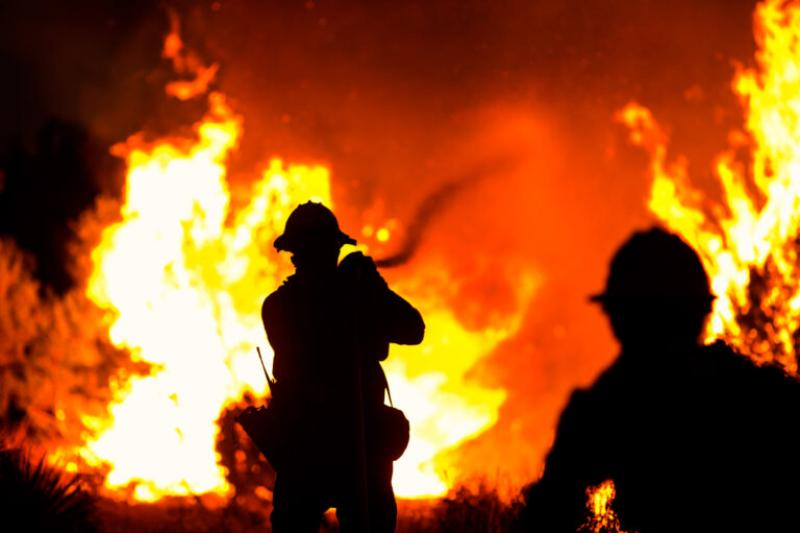 Firefighters battle the Bobcat Fire in Juniper Hills, Calif.