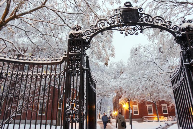 Harvard yard gate in the snow