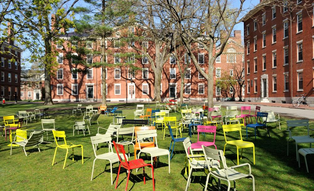 chairs in harvard yard