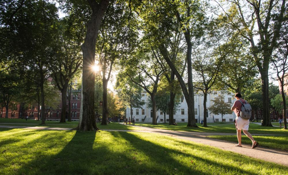 A student walks through Harvard Yard at dusk