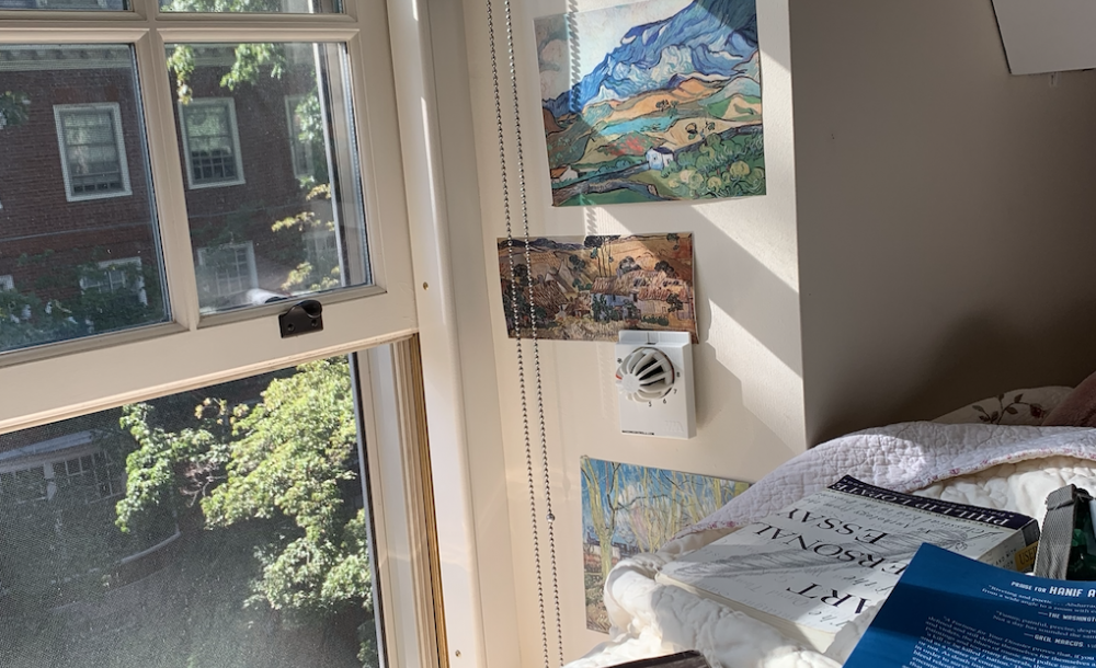 books scattered across a bed and a view of trees and sunlight through the window