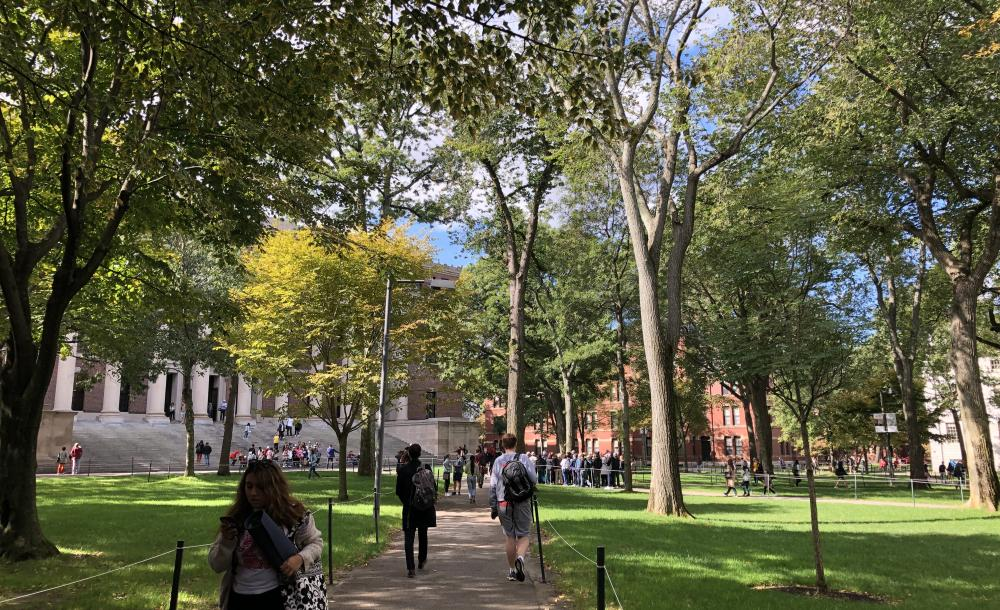 outside walking to classes on a sunny day with bright green trees and grass