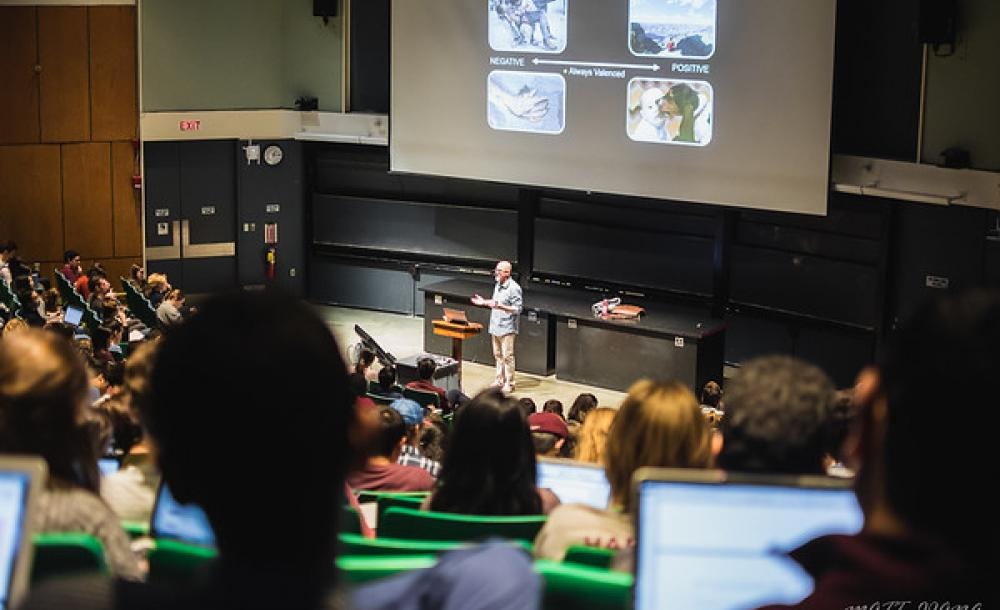 Class in a large lecture room