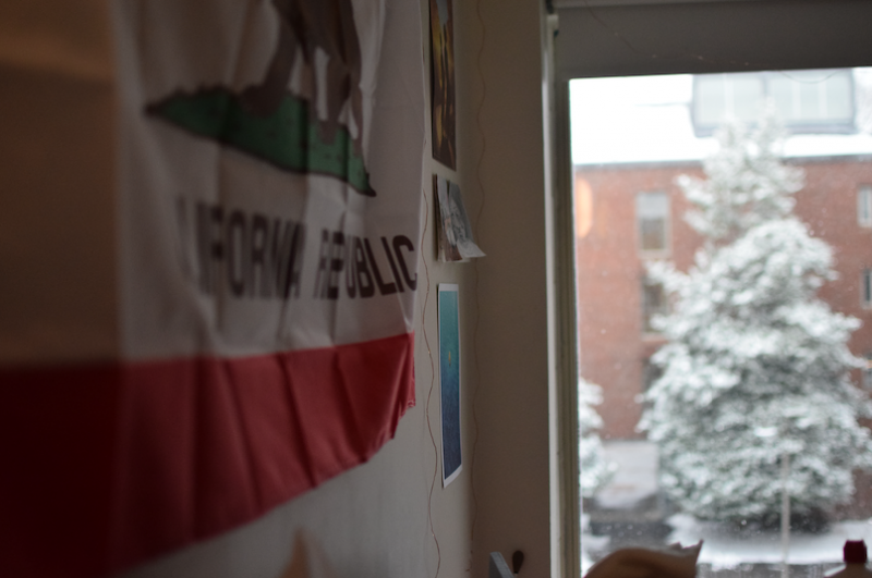 California flag and window showing snow-covered tree