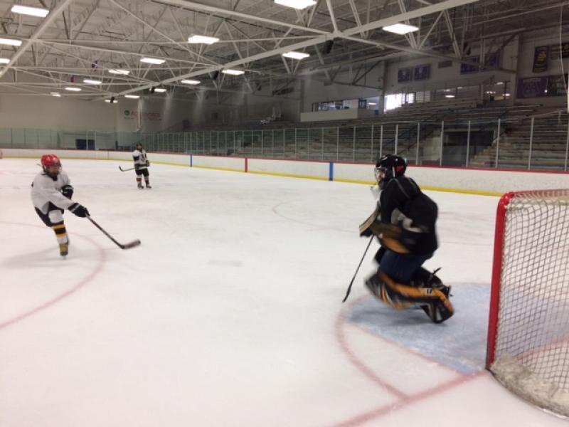 Professor Susan Murphy playing hockey.