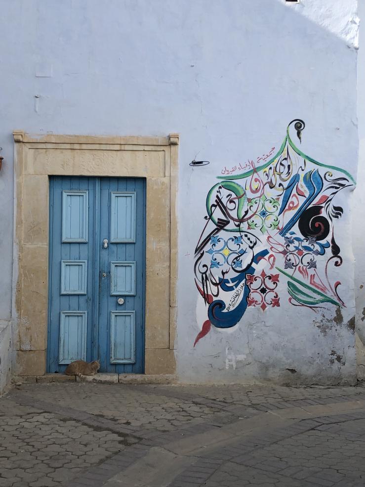 Blue door, cat, and graffiti in Medina