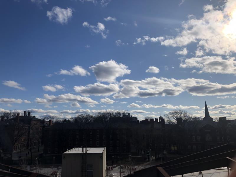 Sunny day with clear blue skies overlooking buildings in Harvard Yard