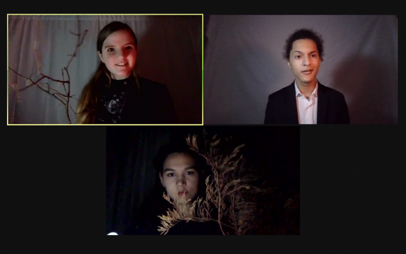 Three actors on a zoom call, with red and white lighting and branches for props.