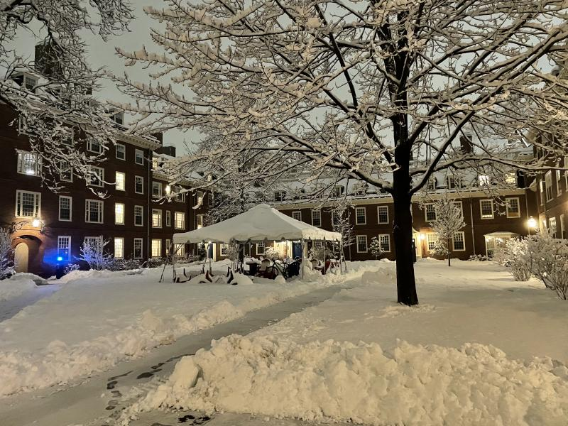 Heavy Snow in the Small Lowell Courtyard