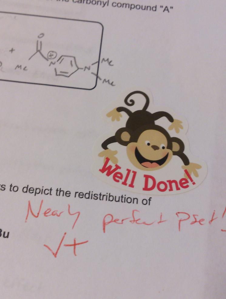 Completed homework with comments and a congratulatory sticker featuring a monkey