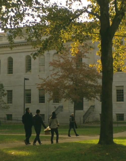A group of people walk across a path cut between grassy areas and trees in Harvard Yard.