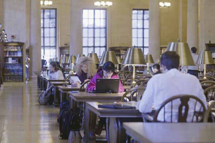 Students studying in Widener Library