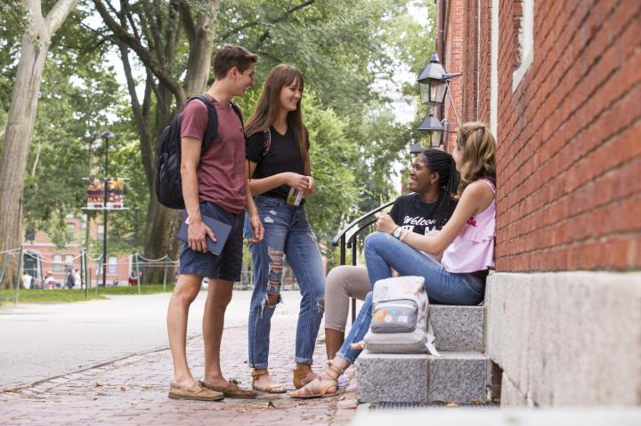 Four students hanging out in Harvard Yard