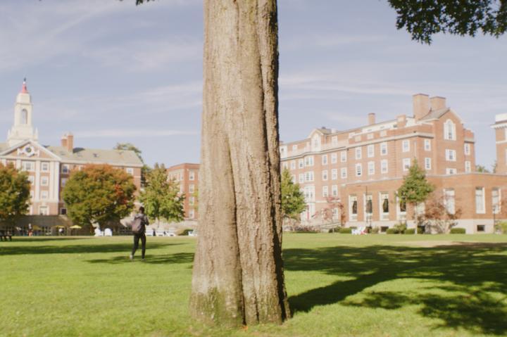 Admissions | Harvard