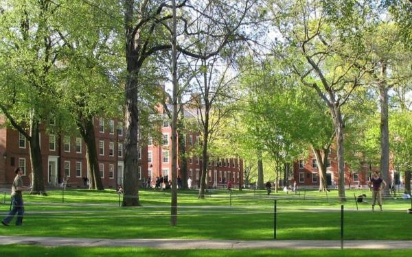 A picture of Harvard Yard