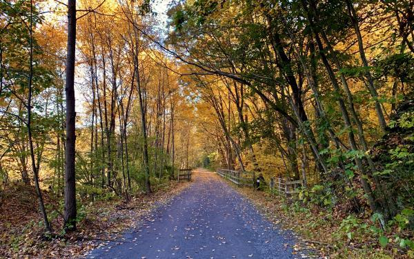 fall trail