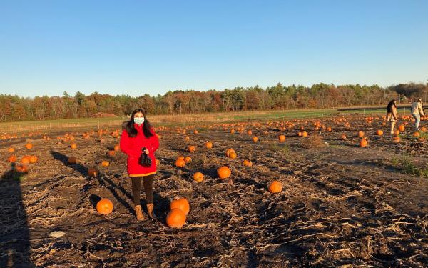 Girl in a field of pumpkins.